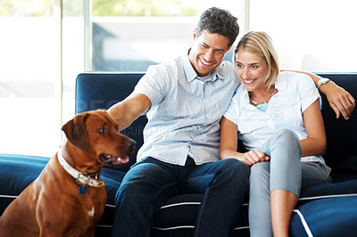 Buy stock photo Portrait of a happy young couple sitting on sofa with their dog at home - Indoor
