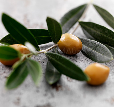 Buy stock photo Closeup of olives with olive branch on wood background