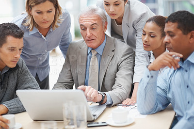 Buy stock photo Portrait of senior business man pointing at laptop screen while discussing with colleagues