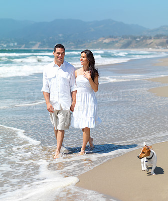 Buy stock photo Full length of a smiling young couple walking on beach with their Jack russell terrier