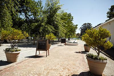 Buy stock photo A beautiful view at a winefarm