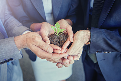Buy stock photo Closeup shot of a young plant in soil being held by a group of businesspeople