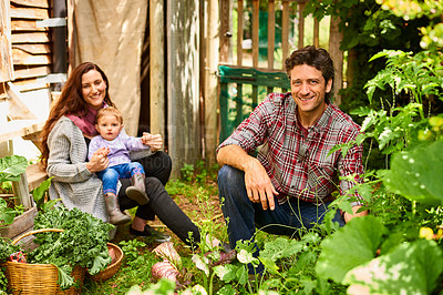 Buy stock photo Portrait of a smiling couple working in their organic garden