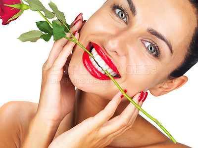 Buy stock photo Closeup portrait of an attractive young woman holding a red rose in her teeth, isolated on white - copyspace