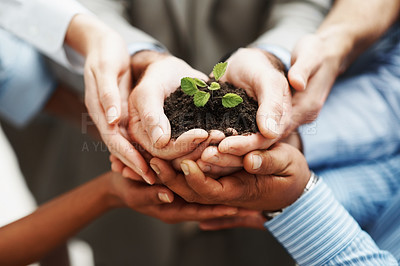 Buy stock photo Business development - Closeup of hands holding seedling in a group