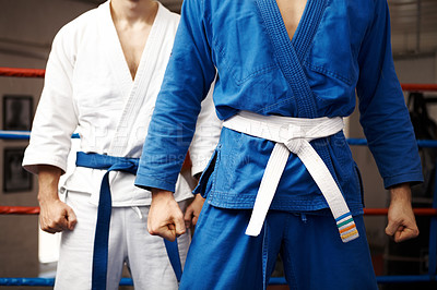 Buy stock photo Cropped shot of a two young martial artists standing in a ring