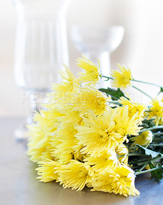 Buy stock photo Gorgeous bouquet of yellow daisies