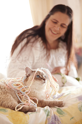 Buy stock photo A woman gazing lovingly at the cat covered in yarn while lying on a bed