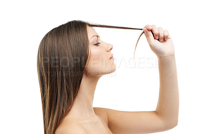 Buy stock photo A beautiful young woman inspecting hair while isolated on a white background