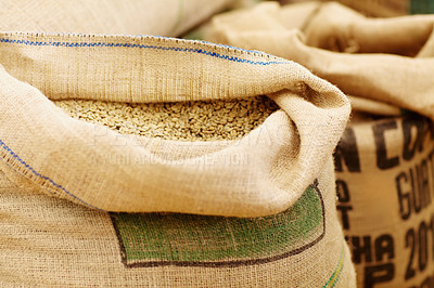 Buy stock photo Shot of burlap sacks fill with unprocessed coffee beans