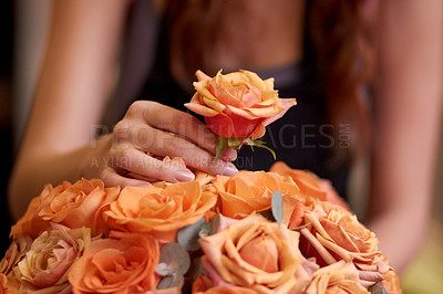 Buy stock photo Closeup of a florist's hands as she prepares a bouquet of flowers