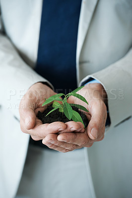 Buy stock photo Cropped image of hands holding a small plant growing in soil