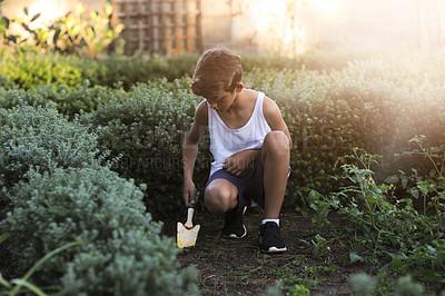 Buy stock photo Shot of a young boy gardening outside