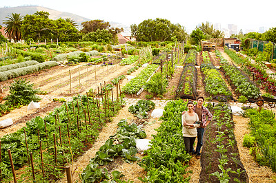 Buy stock photo Portrait of a smiling couple standing in their organic garden