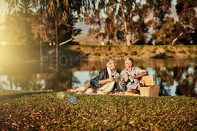 Buy stock photo Shot of a happy senior couple drinking wine while enjoying a picnic outside