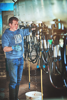 Buy stock photo Shot of a farmer preparing the cow milking equipment on a dairy farm