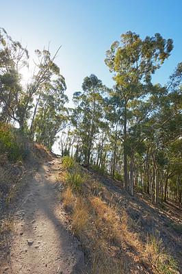 Buy stock photo Mountain trail - Table Mountain National Park