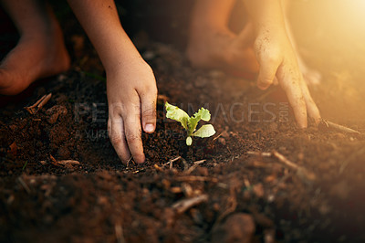 Buy stock photo Closeup shot of an unidentifiable little boy gardening outdoors