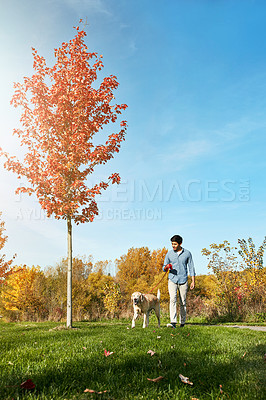 Buy stock photo Shot of a young man taking his dog for a walk through the park