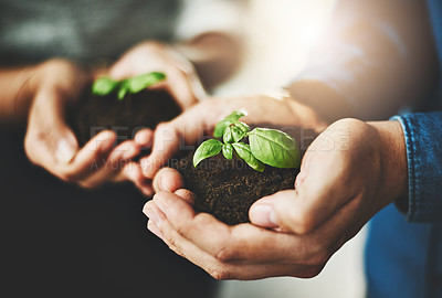 Buy stock photo Closeup shot of two unrecognizable businesspeople holding plants growing out of soil