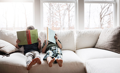 Buy stock photo Shot of two adorable brothers reading books while relaxing together on the sofa at home