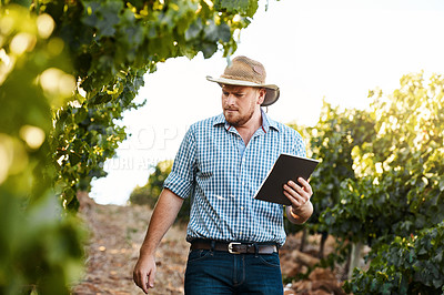 Buy stock photo Shot of a farmer using a digital tablet while doing his rounds