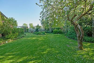Buy stock photo A series of beautiful garden photos
