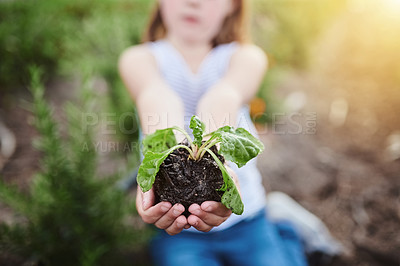 Buy stock photo Cropped shot of an unrecognizable little girl helping out on her family's farm