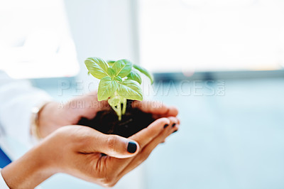 Buy stock photo Cropped shot of a doctor holding a plant growing out of soil