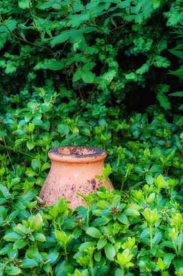 Buy stock photo In my garden - jar and flower pot