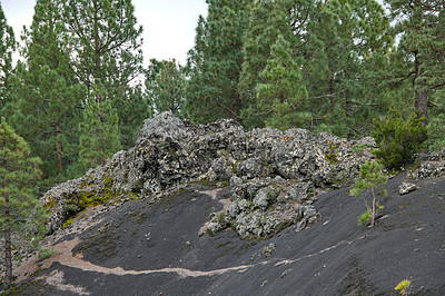 Buy stock photo Beautiful lava landscape on the Cumbre Nueva in La Palma