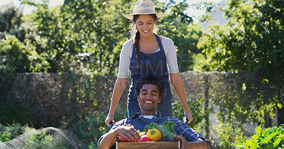 Buy stock photo Cropped portrait of an attractive young female farmer pushing her husband around in a wheelbarrow while working on their farm