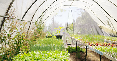 Buy stock photo Cropped shot of a large greenhouse on a farm