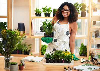 Buy stock photo Cropped portrait of an attractive young female botanist working in her florist