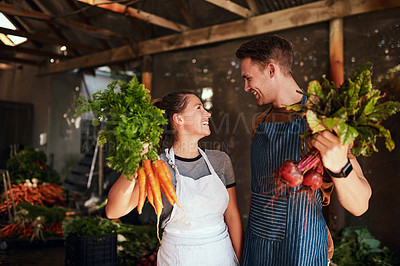 Buy stock photo Shot of a happy young couple posing together holding bunches of freshly picked carrots and beetroot at their farm