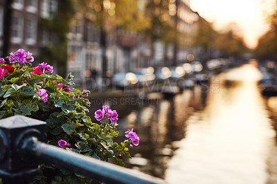 Buy stock photo Still life shot of a bunch of flowers tied around a railing near a canal in Amsterdam, Netherlands
