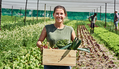 Buy stock photo Portrait of an attractive young woman carrying a crate full of vegetables outdoors on a farm
