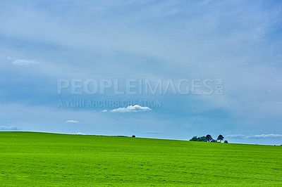 Buy stock photo Farmland in springtime - lots of copy space
