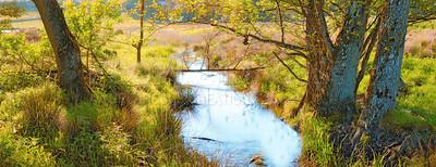 Buy stock photo Images of Danish nature