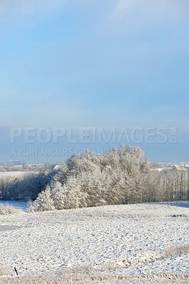Buy stock photo Danish nature in snow