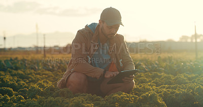 Buy stock photo Full length shot of a handsome young male farmer using a digital tablet while working in a crop field
