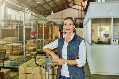 Buy stock photo Cropped portrait of an attractive mature supervisor standing alone with an industrial trolley loaded with stock in a warehouse