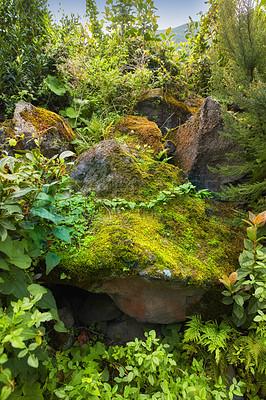 Buy stock photo The Island of La Palma, Canary islands, Spain
