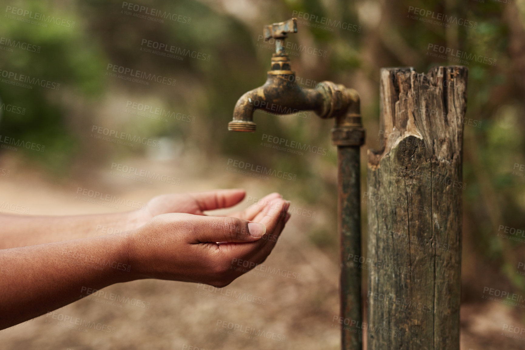 Buy stock photo Cropped shot of an unrecognisable woman holding her hands out for water from a tap in nature