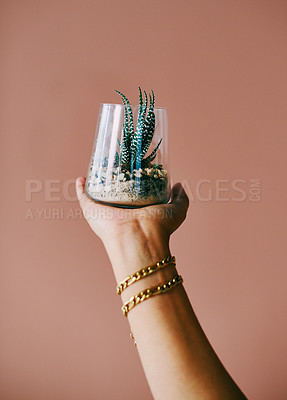 Buy stock photo Closeup shot of an unrecognisable woman holding a succulent plant in a glass vase